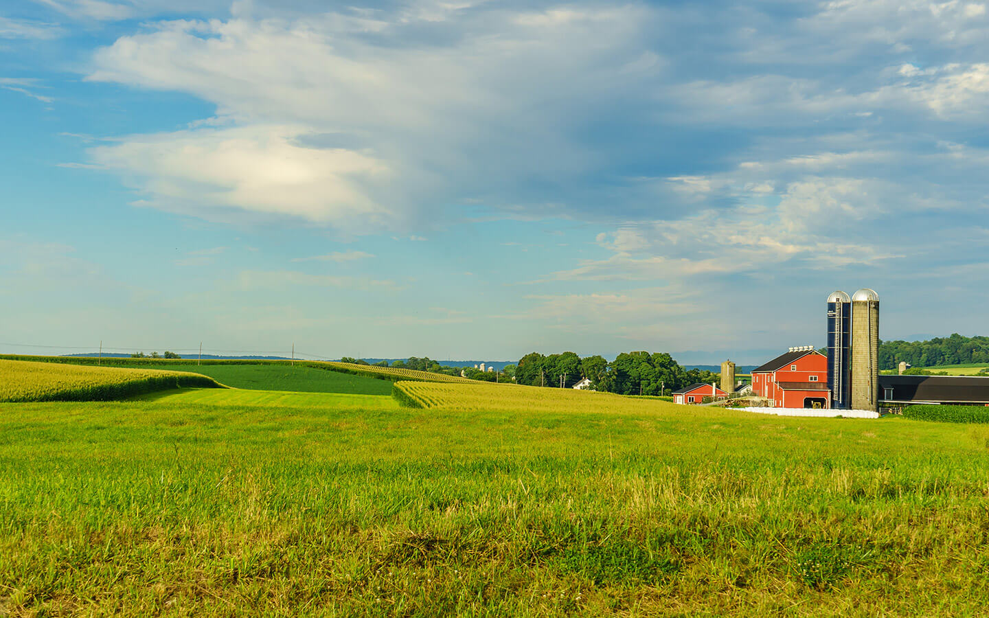Farm in Lancaster County