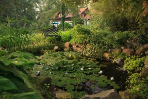 Pond and bench in the garden at our Lancaster, PA bed and breakfast