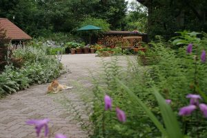 Patio walkway with flowers and a cat at our B&B offering exceptional lodging in Lancaster County PA
