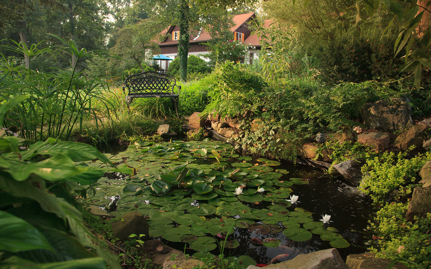 Pond in the garden at our Lancaster County B&B