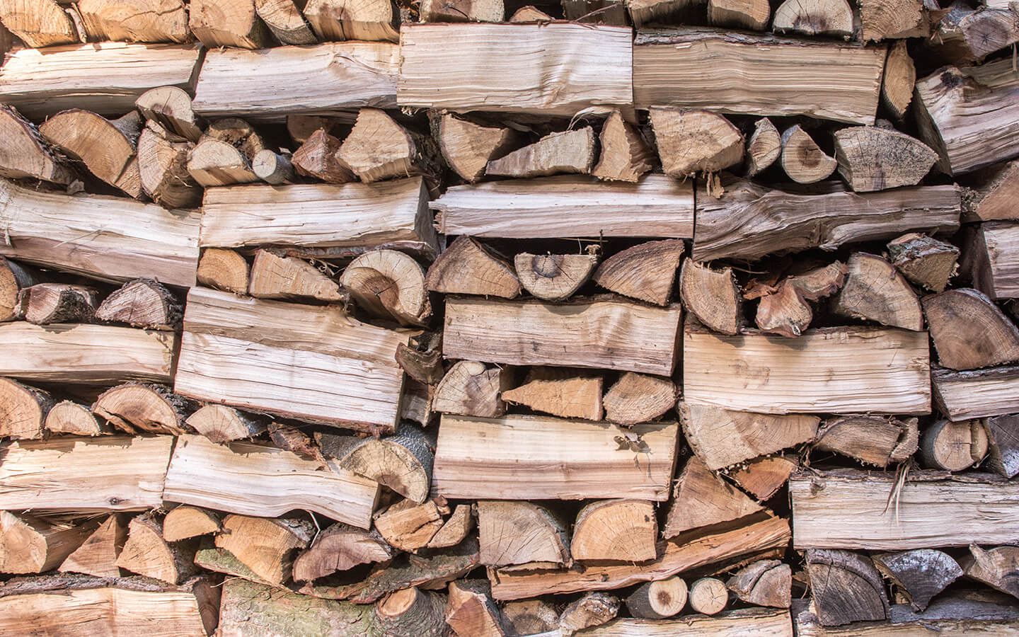 Wood pile in the garden